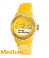 PAN.BC.LEC.U.S.13 Ice-Pantone 43mm